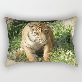 Young Tiger Rectangular Pillow