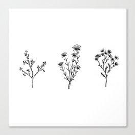 Wildflower Trio Canvas Print