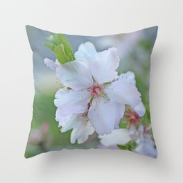 Almond tree flower blooming Throw Pillow