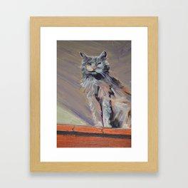 cat with one eye Framed Art Print