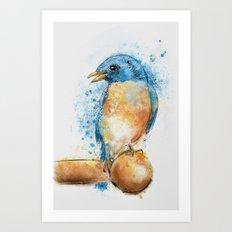 Expressive Bluebird Art Print