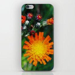 Sunshiny iPhone Skin