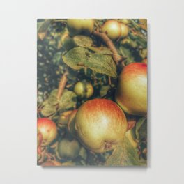 Apple taters Metal Print