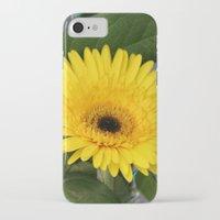 sunshine iPhone & iPod Cases featuring Sunshine  by IowaShots