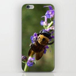 Bumble Bee on purple iPhone Skin