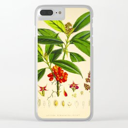 Vintage Scientific Botanical Illustration Species Drawing Himalayan Plants Green Leaves Red Berries Clear iPhone Case