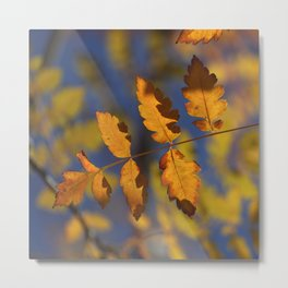 """Golden leaves"" Metal Print"