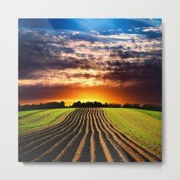Agricultural Field 002 Metal Print