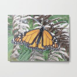 Monarch of the Fen Metal Print