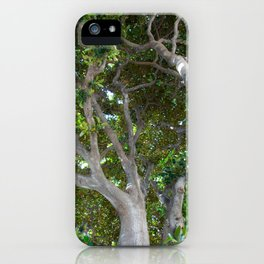 Under the roof of a magnolia iPhone Case