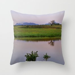 Serenity sunset at the lagoon. Spring dreams Throw Pillow