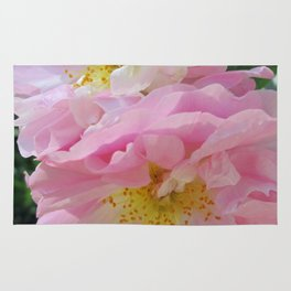 Celestial Antique Rose Rug