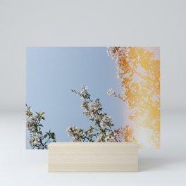 spring flowers iii Mini Art Print