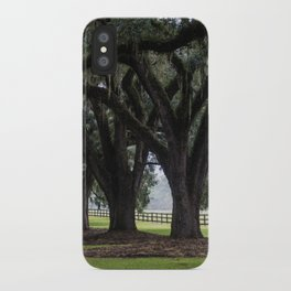 Tree Arch Drive iPhone Case