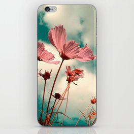cosmos flowers II iPhone Skin