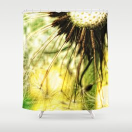 Dandelion 7 Shower Curtain