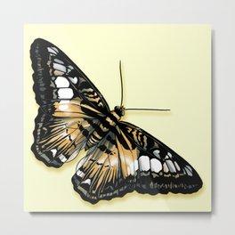 Papillon jaune et noir Metal Print