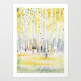 Birch Forest In The Morning Art Print