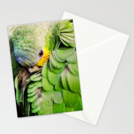 Sheepish bird - Parrot Stationery Cards