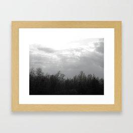 trees and skies. Framed Art Print