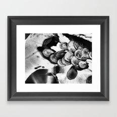 seeds II Framed Art Print