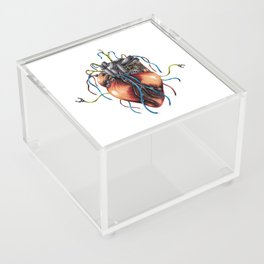 Mechanical Heart Acrylic Box