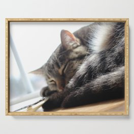 Sleepy Cat Serving Tray