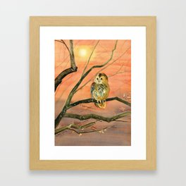 Colorful Owl Art Framed Art Print