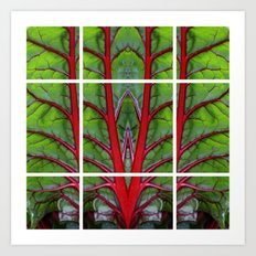 Swiss Chard - Leaf of Life Art Print