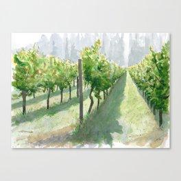Vineyard Sun Canvas Print