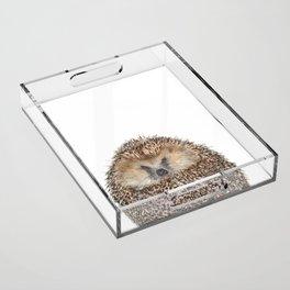 Hedgehog Acrylic Tray