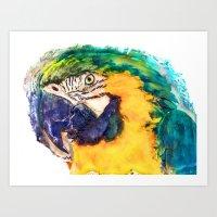 parrot Art Prints featuring Parrot by jbjart