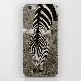Zebra crossing iPhone Skin