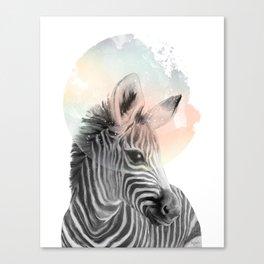 Zebra // Dreaming Canvas Print