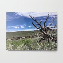 Ghost town twisted tree Metal Print
