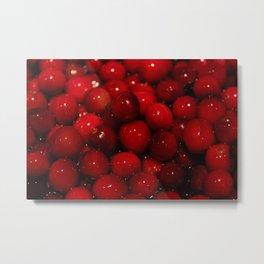 Cranberries Photography Print Metal Print