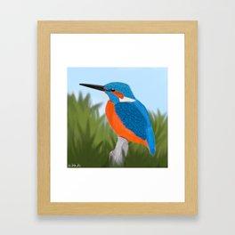 jz.birds Kingfisher Bird Design Framed Art Print