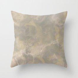 Elegant beige brown Throw Pillow