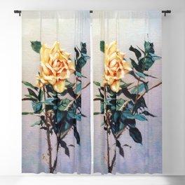 Rosa/Rose Blackout Curtain