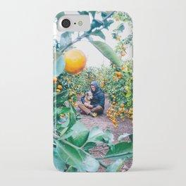Valencian Orange Grove iPhone Case