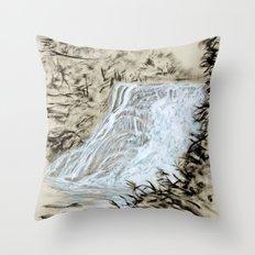 Local Gem # 6 - Ithaca Falls Throw Pillow