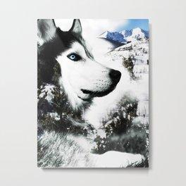 The Husky's Mountain Gaze by Vince Bongiovanni Metal Print