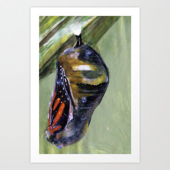 Monarch Chrysalis  Art Print