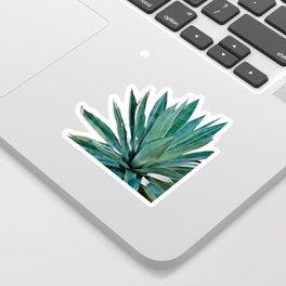 Agave Cactus Sticker