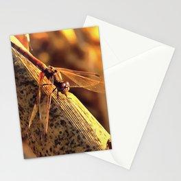 Elegant Red Darter Dragonfly Stationery Cards