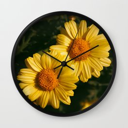 Yellow daisies in the garden Wall Clock