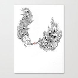 Peacock III Canvas Print