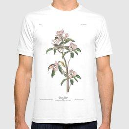 Cuvier s regulus, Birds of America, Audubon Plate 55 T-shirt