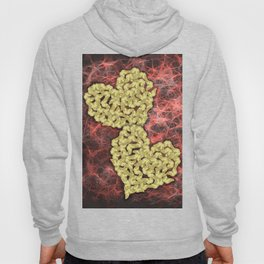 Romantic gold butterflies in an abstract webbed reality Hoody