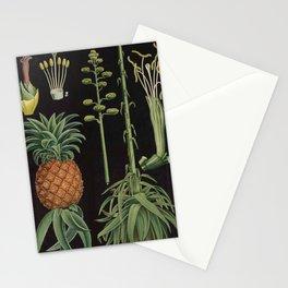 Botanical Pineapple Stationery Cards